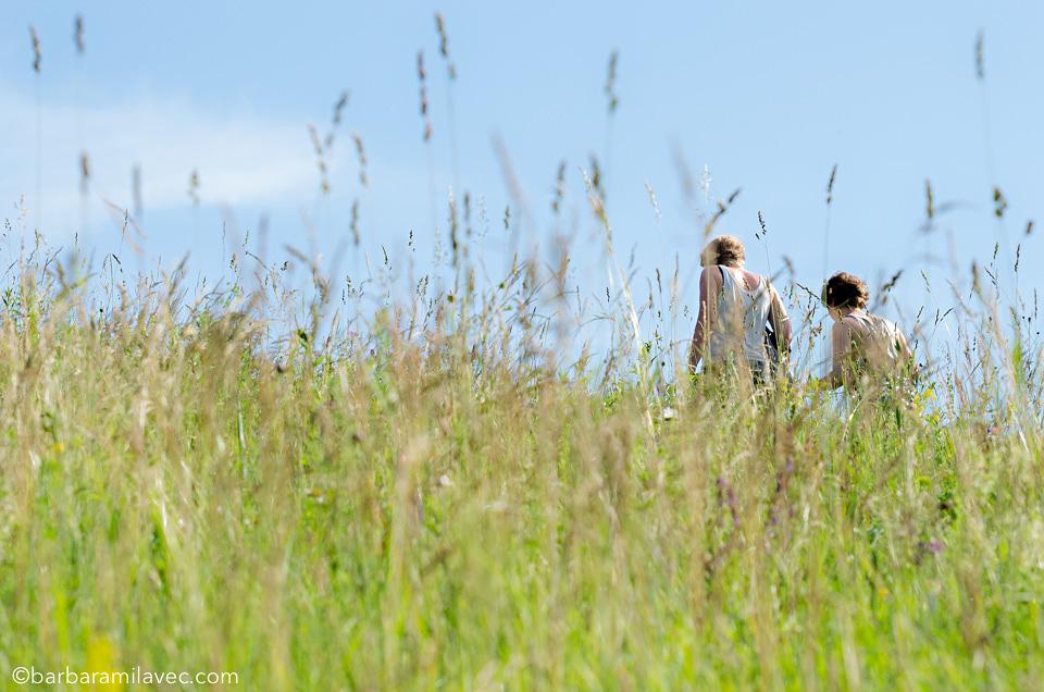 31-nature-conservation-photographer